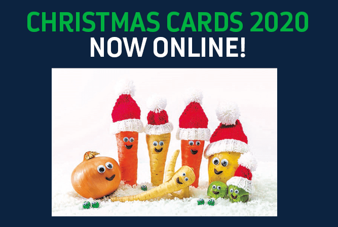 Eruk Christmas Cards Now Available To Pre Order Epilepsy Research Uk